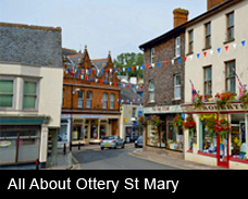 All about Ottery St Mary button